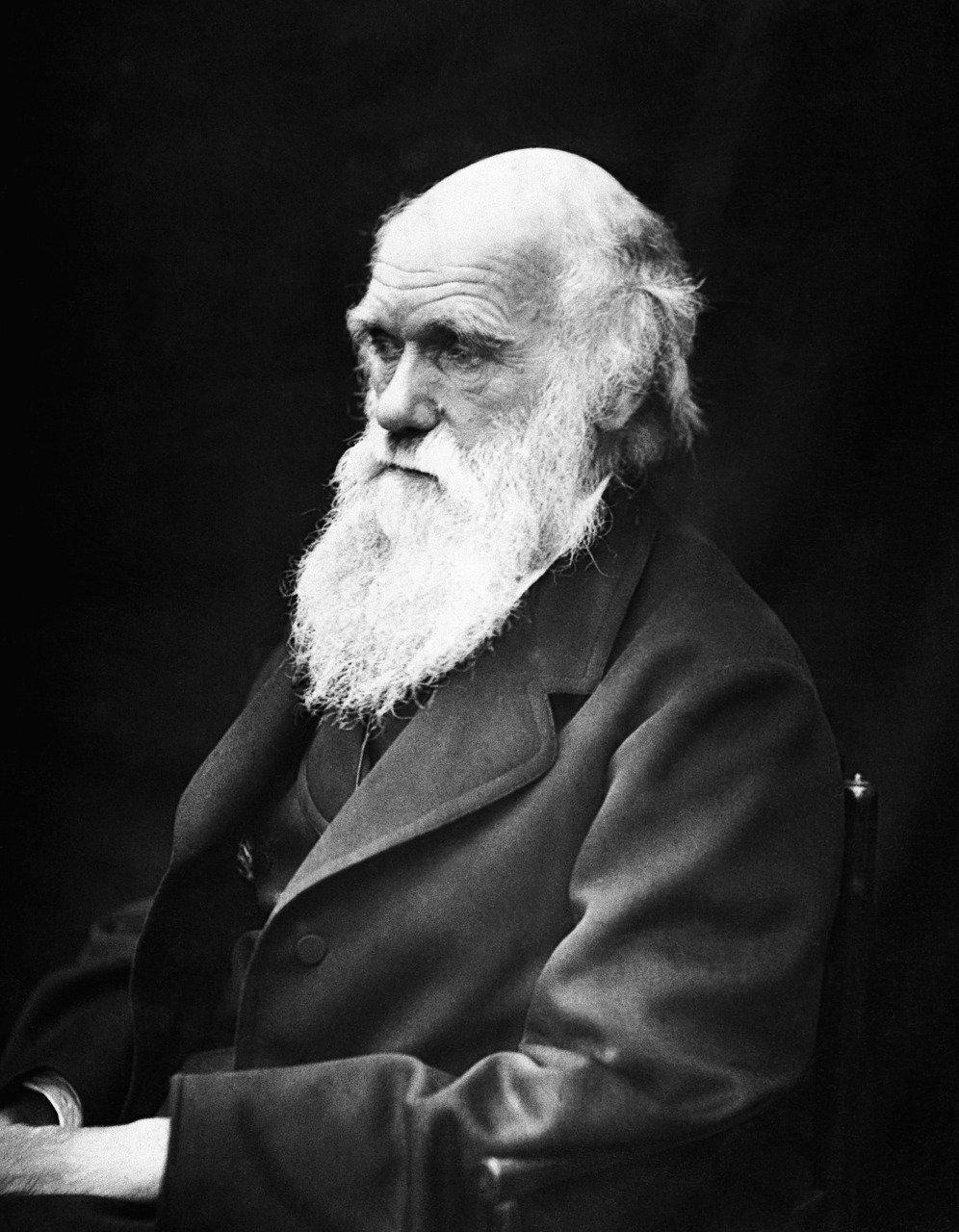 Myśl Darwina.